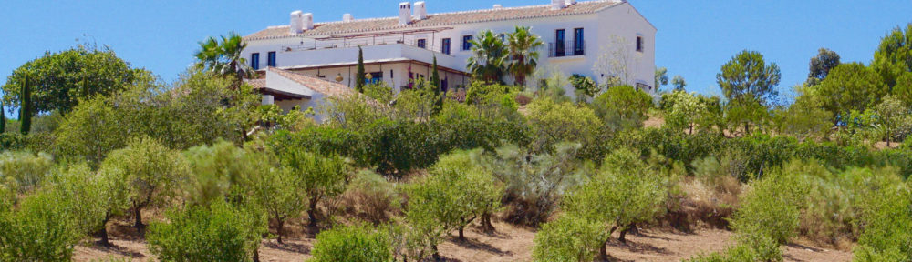 Bed & Breakfast with style in the countryside of Málaga city